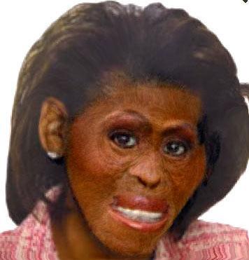 Tikrasis Mišelės Obama veidas po mokslinių Č. Darvino naturaliosios atrankos teorijos ir Goglės algoritmų apdorojimų