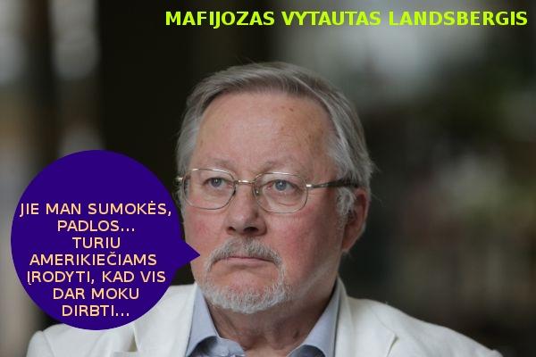 Vytautas Landsbergis reketyras